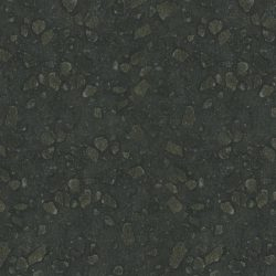gl-006-cygnus-large